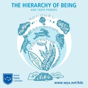 HDC_socialmedia_heirarchy