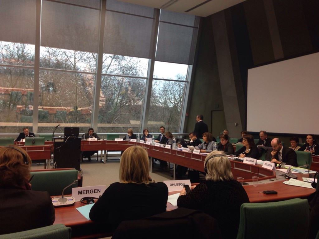 COE Committee on Social Affairs Meeting
